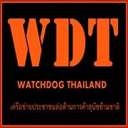 Rescued 20 dogs from Meat Trade in NongKhai Thailand