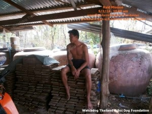 Dog Tannery (2)