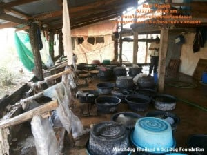 arrest dog Tannery in ThaRae