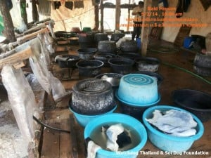Dog Tannery (6)