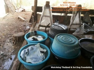 Dog Tannery (7)