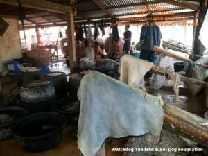Dog Tannery (8)