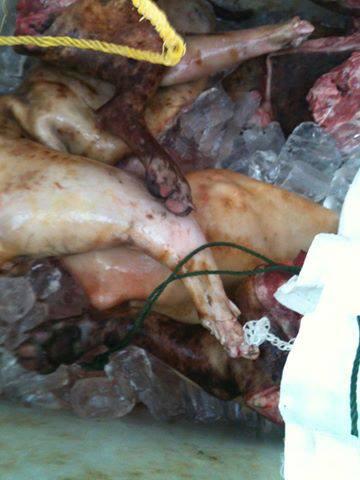 Vietnam Mob Kills Dog Thieves